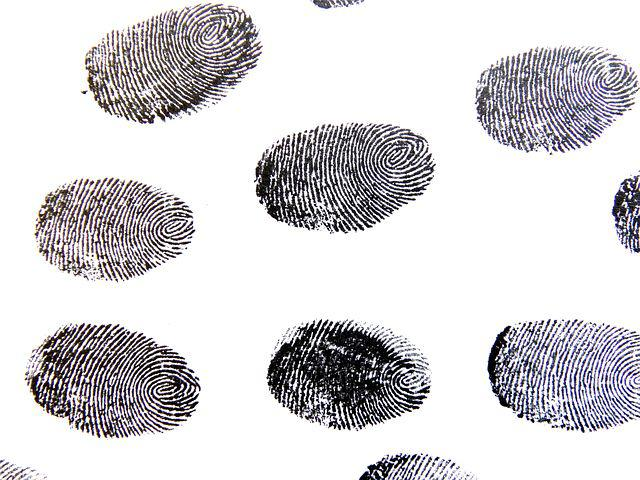 Fingerprint, Traces, Pattern, Detective, Contrasts