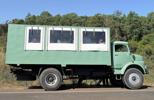Transport, Jeep, Safari, Africa, Kenya, Group