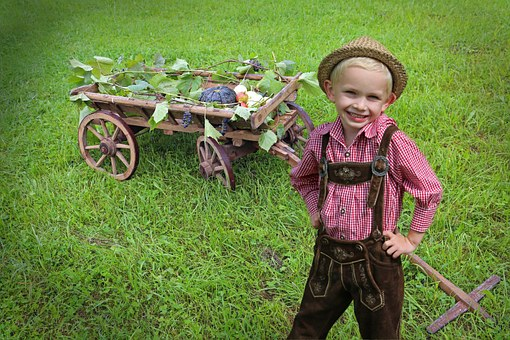 Child, Nature, Costume, Boy, Blond, Nature Trusts, Cart