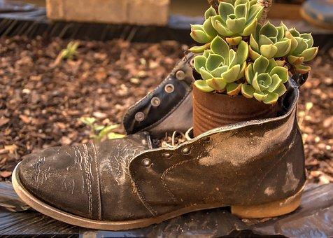 Shoe, Container, Garden, Decoration