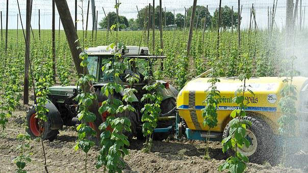 Agriculture, Tractor, Arable, Green, Hops, Hops Growing