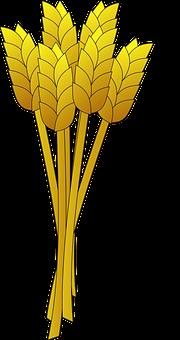 Wheat, Yellow, Stalk, Grain, Food