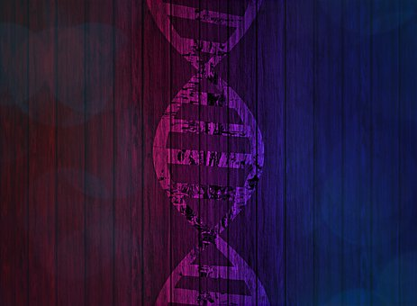 Dna, Deoxyribonucleic Acid, Genetic Information