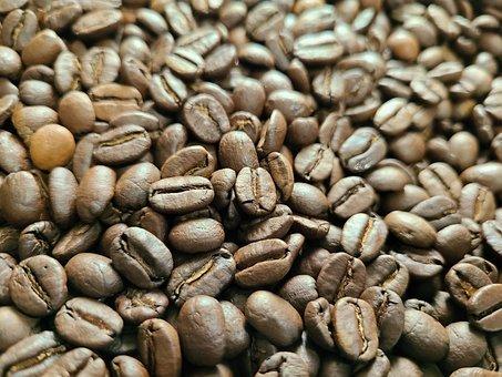 Bean, Coffee, Coffee Beans
