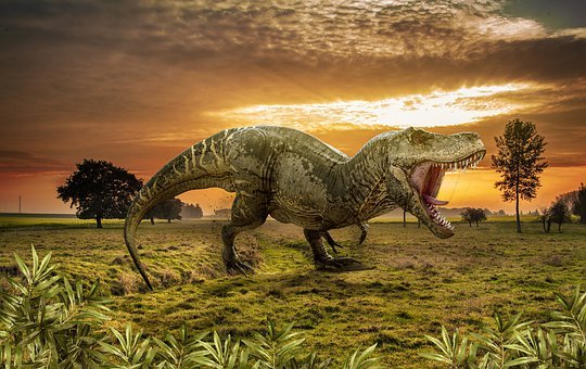 Dinosaur, Landscape, Animal, Forest, Jungle, Sunset