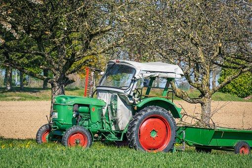 Tractor, Deutz, D 25, Commercial Vehicle, Tractors