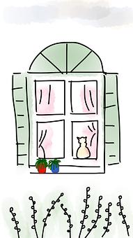 Window, Cat, Curtain, Flower Pot, Plants, Green, Spring