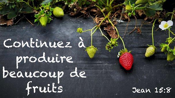 Fruit, Strawberries, Power, Health, Delicious, Garden