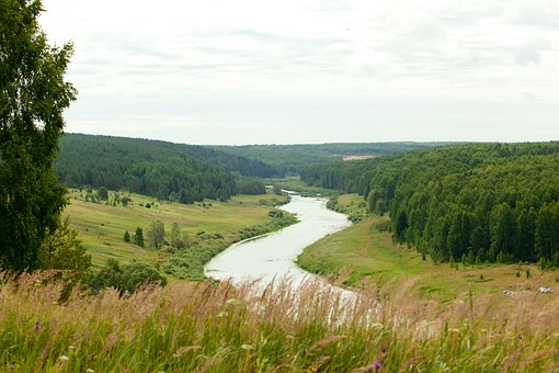 River, Nemda, View, Open Space, Water, Forest, Grass