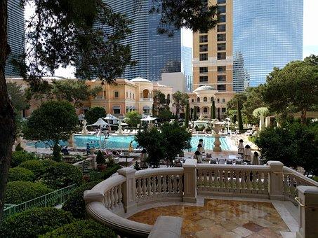 Bellagio Pool, Pool, Swimming, Bellagio, Afternoon