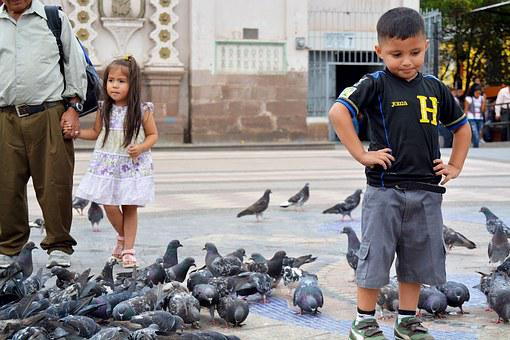 Child, Girl, Plaza, Pigeons, Church, The, Pains