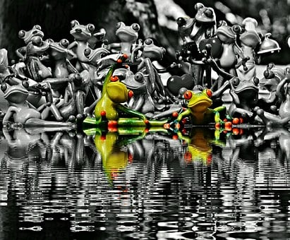 Frogs, Many, Group, Collection, Mirroring, Water, Bank