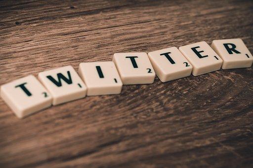 Twitter, Social Media, Media, Social, Internet, Network