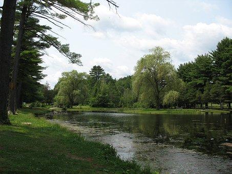 Small Green Pond, Landscape, Park, Waterscape