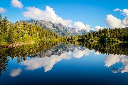 Lake, Water, Nature, Summer, Landscape, Reflection