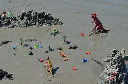 Florida, Florida Beach, Sand, Toys, Water, Wet Sand
