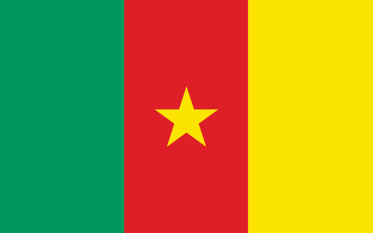Cameroon, Flag, Country, Cameroonian, Cameroon Flag