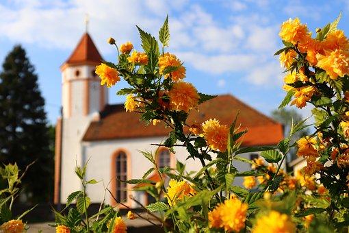 Church, Flowers, Green, Monastery, Garden, Plant