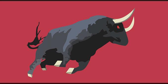 Bull Fighting In Spanish, Horns, Bullfight, Cattle, Boi
