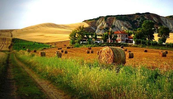 Tuscany, Straw Bales, Rock, Lime, Landscape, Italy