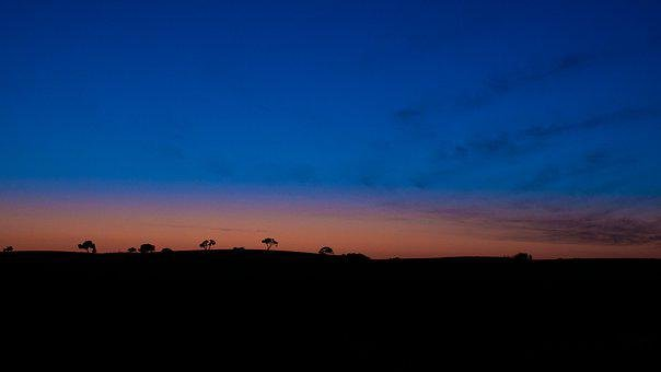 Sunset, California, Sun, Tree, Blue, Orange, Teal