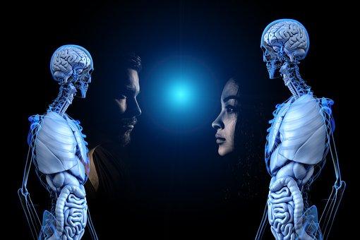 Awareness, Anatomy, Human, Man, Woman, Transparency