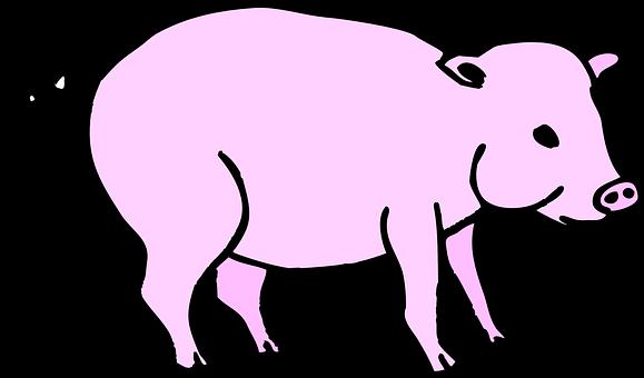 Pig, Pink, Barn, Animal, Tail, Curly, Piggy