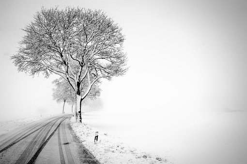 Winter, Road, Snow, Snowy, Cold, Haze, Fog, Nature