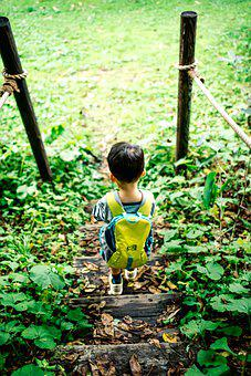 Boy, Picnic, Ruck Sack, Child, Walk, Japanese, Asian