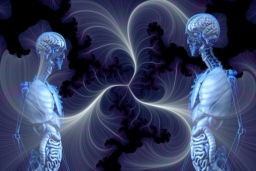 Anatomy, Human, Awareness, Transparency, Knowledge