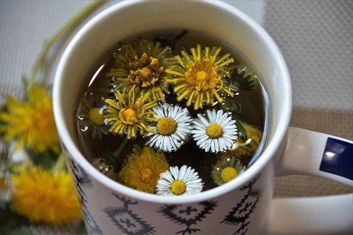 Tea, Herbal, Dandelion, Daisy, Detox