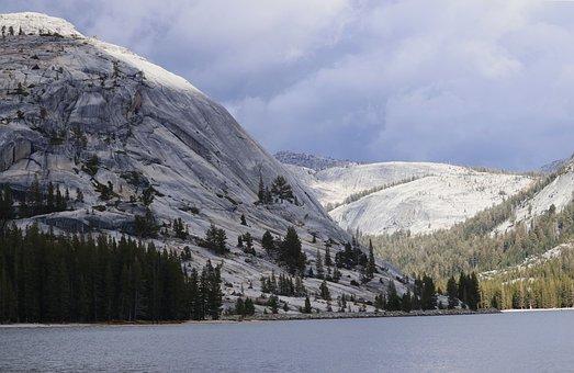 Lake, Water, Tenaya Lake, Yosemite, Nature, Landscape