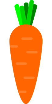 Carrot, Carrot Illustration, Vegetables, Food, Organic
