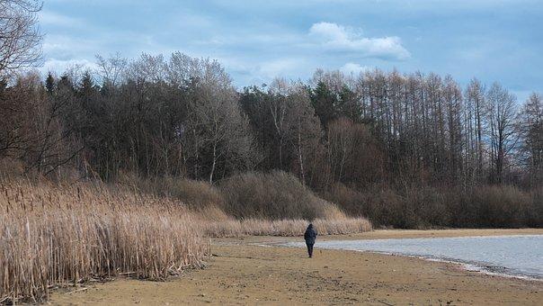 Pond, Beach, Walk, Hike, Winter