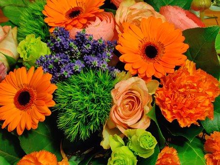 Flowers, Bucket, Orange, Green, Beautiful, Petals
