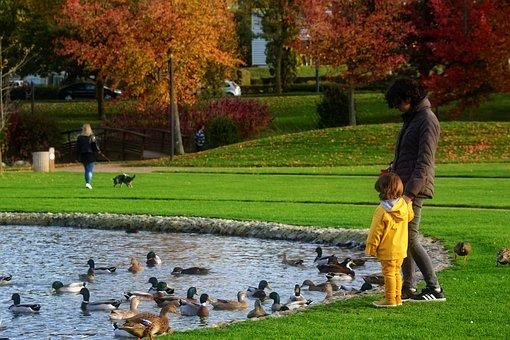 Park, Promenade, Mom, Child, Nature, Trees, Fall, Girl