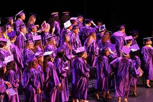 Graduate, Education, Achievement, Diploma, Cap