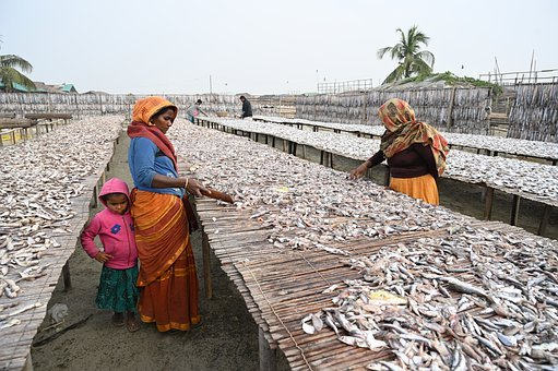 Dryfish Seller, Woman, Empowerment, Female, Women, Girl