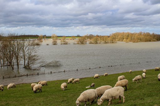 Niederrhein, High Water