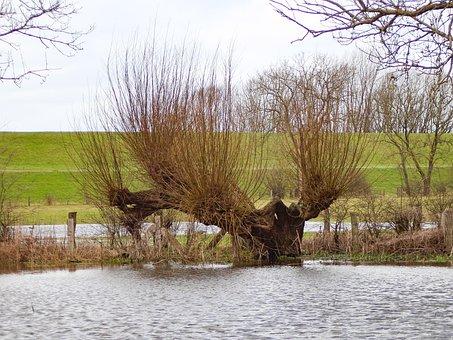 Niederrhein, Walsumer Rheinaue