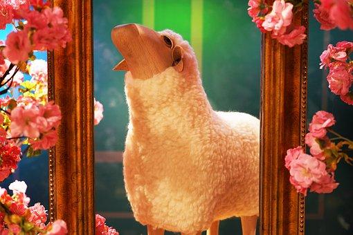 Flower, Sheep, Design, Decoration, Household