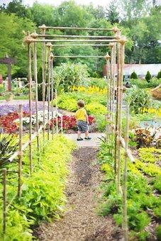 Garden, Arbor, Green, Summer, Yard, Outdoor, Nature