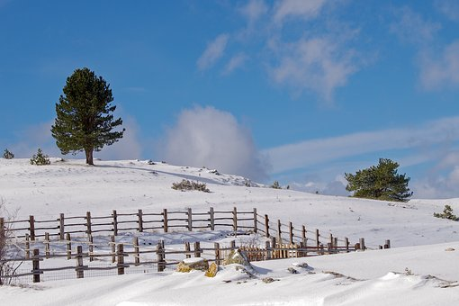 Campotosto, L'aquila, Snow, Winter Landscape, Abruzzo