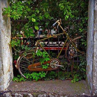 Old, Bike, Rust, Frame, Lake Dusia, Kazimierz, Kraków
