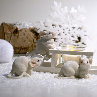 Winter, Mouse, Advent, Snow, Christmas, Christmas Time
