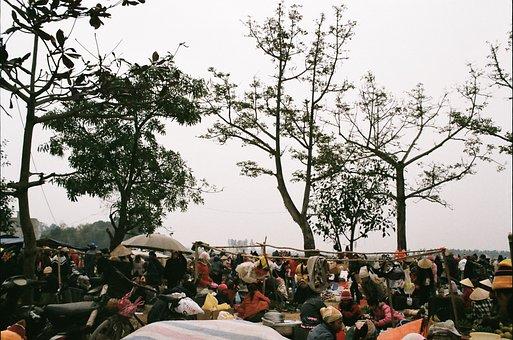 Vietnam, Ha Noi, Home Town, Market, Holiday