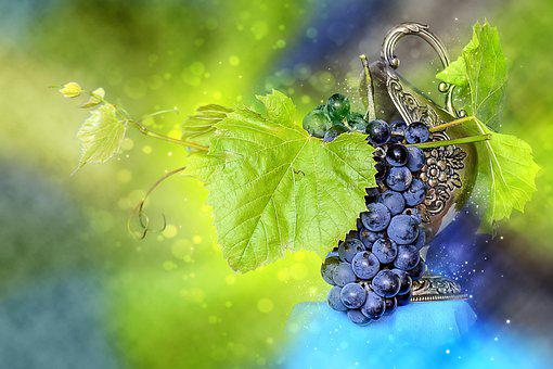 Bunch Of Grapes, Spray, Grapes, Fruit