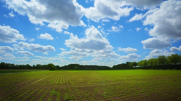 Landscape, Germany, Rural, Sky, Clouds, Nature, Field