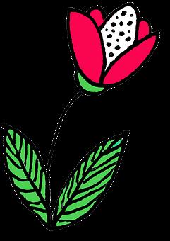 Flower, Nosegay, Nature, Flora, Summer