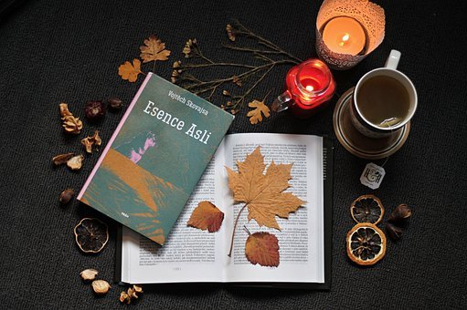 Book, Autumn, The Essence Of, Candle, Tea, Dried Leaves